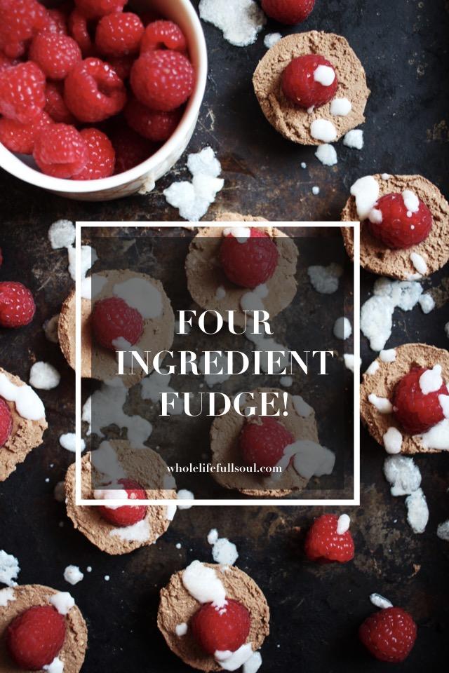 Four Ingredient Fudge